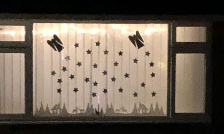 Bletsoe Advent Windows